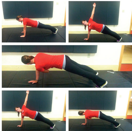 Plank-twist_6